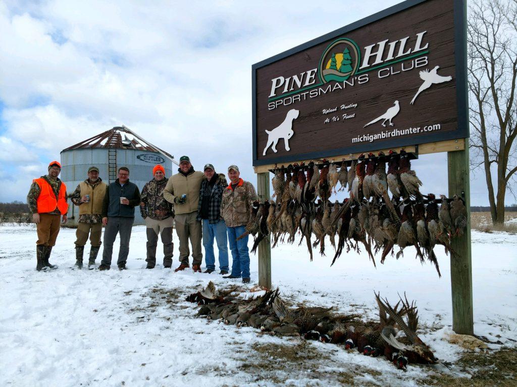 Pheasant lineup 3