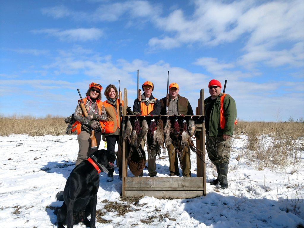 Pheasant lineup 2